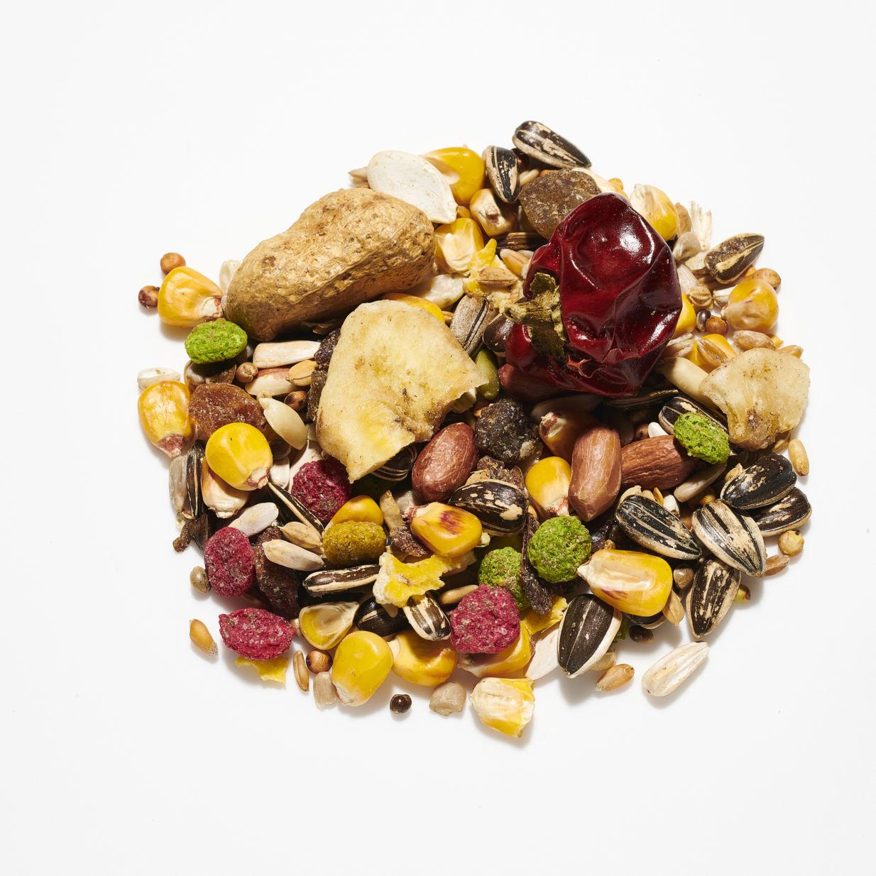Willsbridge Parrot & Fruit – AE James